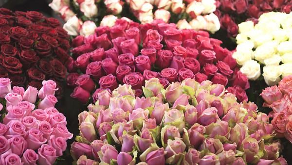 offrir_des_roses